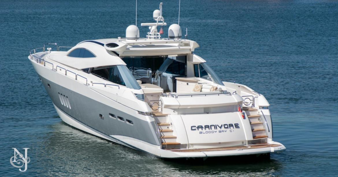 yacht Carnivore